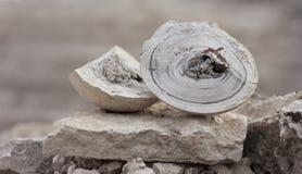 Naturlig mineral Arkivbild