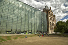 Naturlig museumhistoria i London, UK Royaltyfri Foto