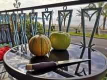 Naturlig ny cantaloupmelon och konstgjort äpple av det samma formatet royaltyfri fotografi