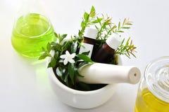Naturlig organisk botanik och vetenskaplig glasföremål, alternativ örtmedicin, naturliga skönhetsprodukter för hudomsorg royaltyfria bilder