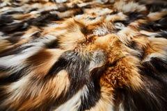 Naturlig päls, textur, bakgrund Fotografering för Bildbyråer