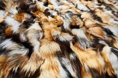 Naturlig päls, textur, bakgrund Royaltyfri Fotografi