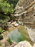 Naturlig pöl i en kanjon i Cypern arkivbilder