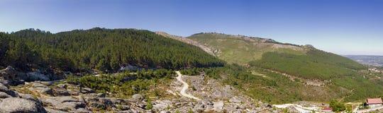 naturlig park Arkivfoto