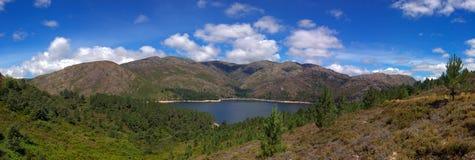 naturlig park för lake Arkivbilder