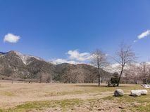 Naturlig plats runt om eken Glen Preserve arkivbild