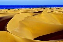 Naturlig reserv av dyn av Maspalomas, i Gran Canaria, Spanien royaltyfri bild
