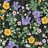 Naturlig sömlös modell med ursnygga mjuka blomma blommor och att blomma örtartade växter på svart bakgrund royaltyfri illustrationer
