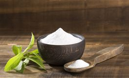 Naturlig sötningsmedel i pulver från steviaväxten - Steviarebaudiana royaltyfria foton