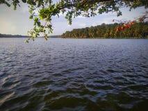 Naturlig sikt av velliyallisjön arkivbilder
