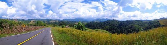 Naturlig sikt för panorama Royaltyfri Bild