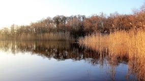 Naturlig sjö med reflexion royaltyfria foton