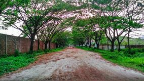 Naturlig skönhet av gräsplan modellerar Town royaltyfri foto