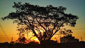 Naturlig skönhet av soluppgång på byn arkivbild