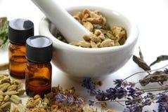 Naturlig skönhetbehandling med kryddor royaltyfri bild