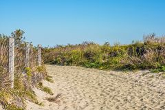 Naturlig slinga Sandy Hook Royaltyfri Bild