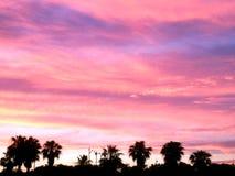 Naturlig solnedgångsoluppgång över fält eller äng brigham royaltyfri fotografi