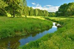 naturlig sommar för bakgrundsliggande Arkivbild