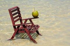 naturlig sommar för drink Arkivfoton