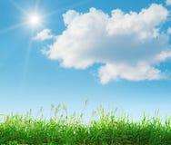 naturlig sommar för liggande Arkivfoto