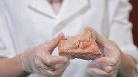 Naturlig stenametist eller en annan mineral, sten Lös ametist i kvinnlighänder i vita handskar Vagga stenen i händer Arkivbilder
