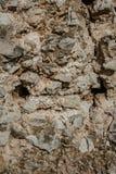naturlig stentextur bakgrund föder upp den steniga stenstrukturen för rocken Tapet med stentextur Royaltyfria Bilder
