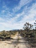 Naturlig sylt för Mojave Arkivfoto