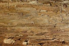 Naturlig textur b för abstrakt sömlös guling för modellekologibeiga Fotografering för Bildbyråer