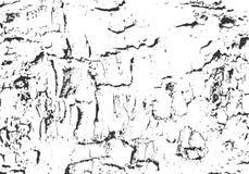 naturlig textur för bakgrundsskäll Grunge träbakgrund Bekymrad vektorsamkopiering Fotografering för Bildbyråer