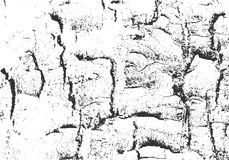 naturlig textur för bakgrundsskäll Grunge träbakgrund Bekymrad vektorsamkopiering Arkivbilder