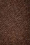 naturlig textur för brunt läder Arkivbild