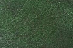 naturlig textur för läder Arkivbild
