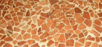 naturlig textur för mosaik för golv för jordfärger Arkivbild