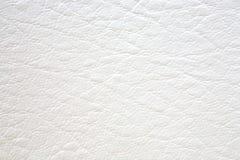 naturlig texturwhite för läder Royaltyfri Fotografi