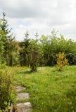 Naturlig trädgård i Österrike Royaltyfri Foto