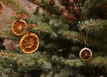 naturlig tree för jul Arkivbild