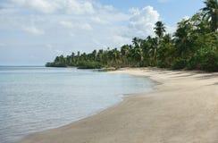 Naturlig tropisk strand, Samana, Dominikanska republiken Royaltyfria Foton