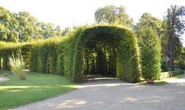 Naturlig tunnel från Sanssouci i Potsdam, Tyskland Royaltyfri Fotografi