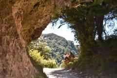 Naturlig tunnel på Abel Tasman Coastal Track Fotografering för Bildbyråer