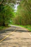 Naturlig tunnelväg. Fotografering för Bildbyråer
