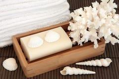 Naturliga Skincare Royaltyfria Foton