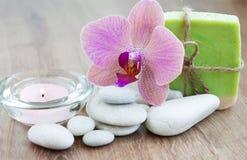 Naturlig växt- tvål royaltyfri foto