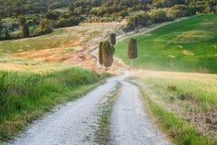 Naturlig vit lantlig väg i Tuscany, Italien Arkivfoto