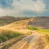 Naturlig vit lantlig väg i Tuscany, Italien Arkivbild
