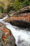 Naturlig waterslidesohiopyledelstatspark, PA Fotografering för Bildbyråer