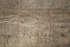 Naturlig wood texturmodell för bakgrund arkivbild