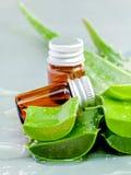 Naturliga brunnsortingredienser för hudomsorg Naturliga brunnsorter Ingredien Royaltyfria Foton
