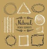 naturliga designelement Skogvektorramar på pappen Arkivbild