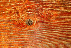Naturliga detaljer av sol torkat trä Royaltyfria Bilder