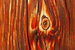 Naturliga detaljer av sol torkat trä Arkivfoton